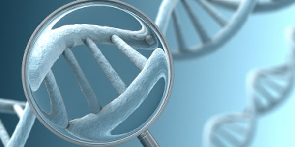 Предимплантационна генетична диагностика (ПГД)