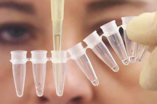 ДНК тестове за майчинство и бащинство